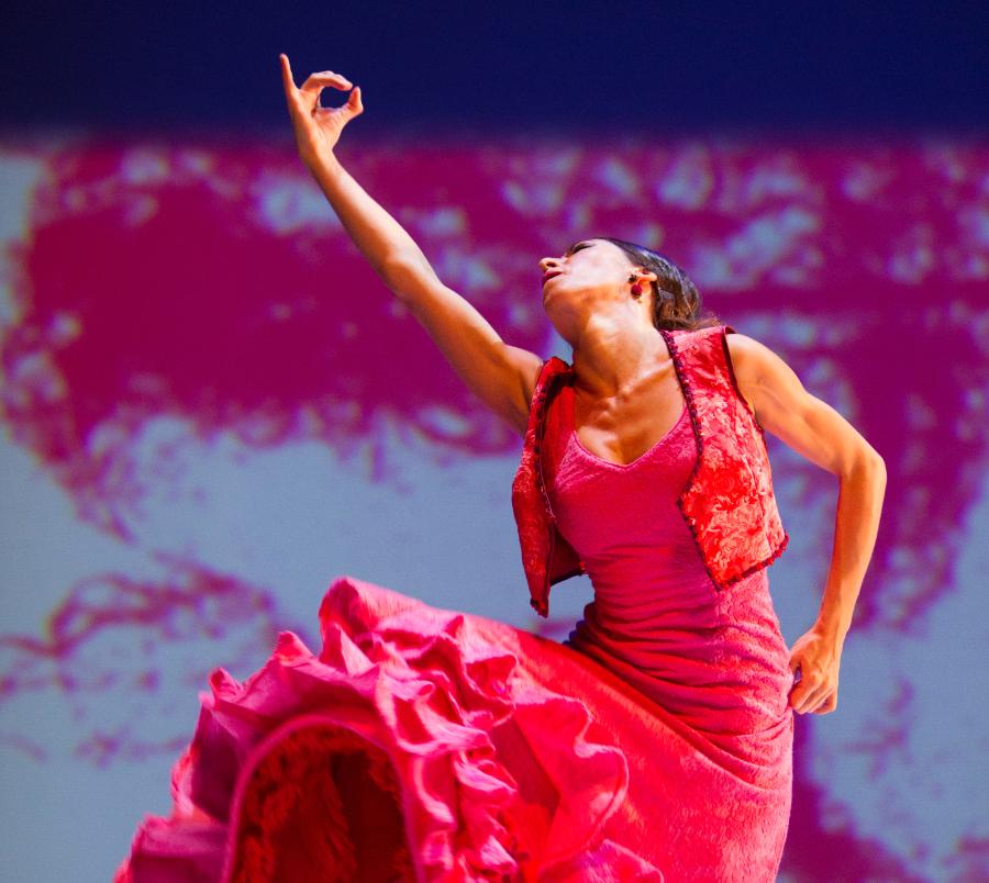 Flamenco Ballet – Consejería de Cultura y Patrimonio Histórico de la Junta de Andalucía, photographer Luis Castilla. – SPAIN