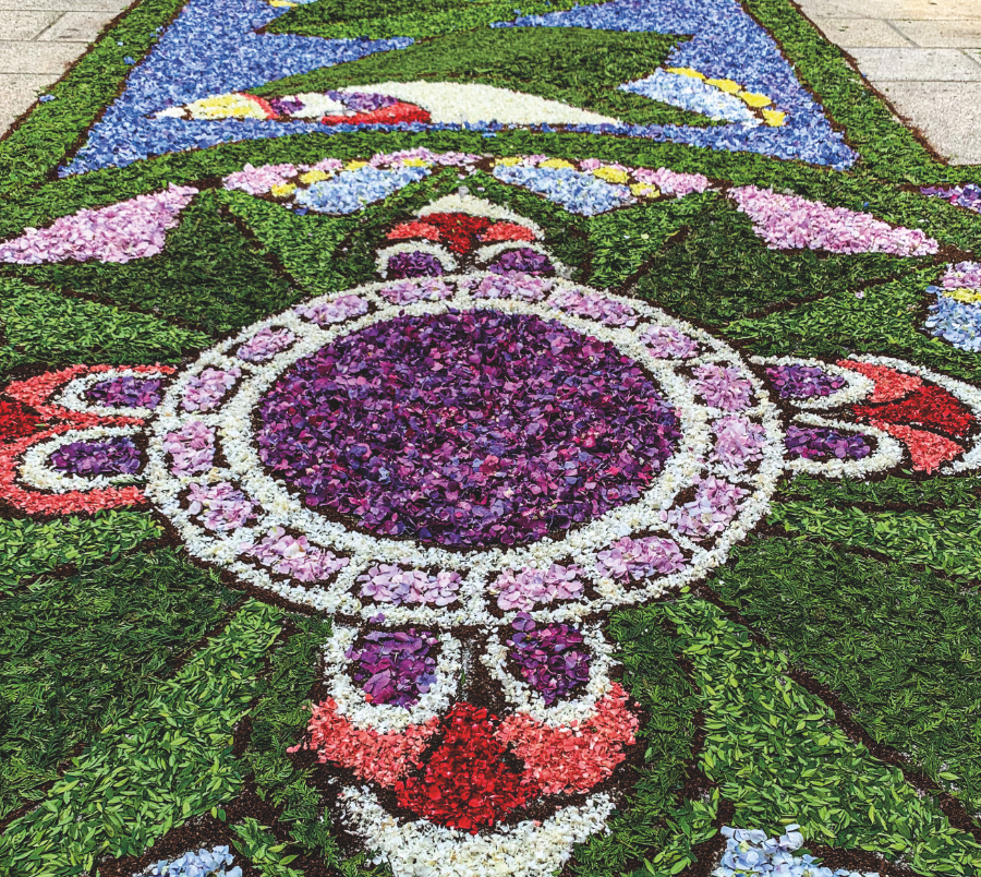 Flower carpets, A Guarda. © University of Vigo